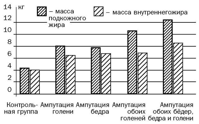 Рис. 3. Изменение массы подкожного и внутреннего жира после ампутации нижних конечностей.